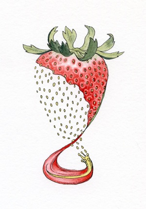 Becoming A Strawberry